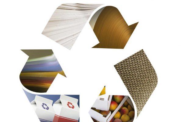 Reciclagem do papel: do cidadão à indústria