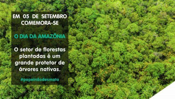 Estudo recente sobre a Amazônia