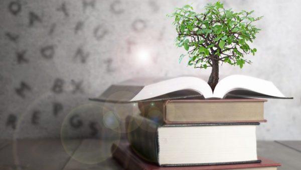 Pesquisa sobre Hábitos de Leitura