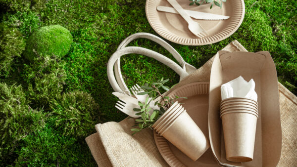 Impacto ambiental das embalagens de papel na América do Norte