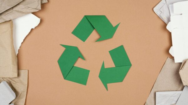 Reciclagem de Embalagens de Papel e Economia Circular