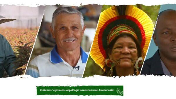 Ibá apresenta: As reais histórias de vida do Setor de Árvores Cultivadas